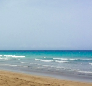 beach dr